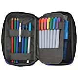 LIHIT LAB Pen Case, 7.9 x 2 x 4.7 inches, Jet Black (A7551-124)