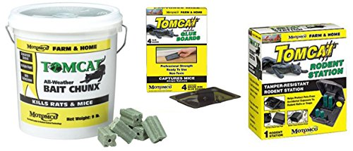 tomcat all-weather bait chunx