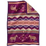 Pendleton Baby Blanket: Muchacho Painted Pony