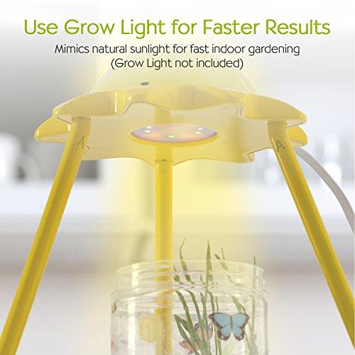 Creativity for Kids Grow 'n Glow Terrarium - Science Kit for Kids by Creativity for Kids (Image #5)