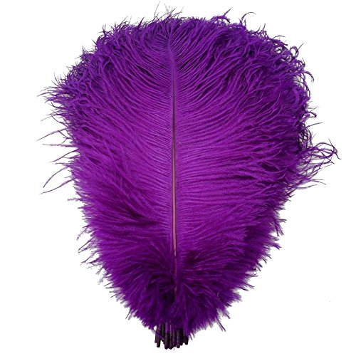 KOLIGHT 40pcs 12''~14''(30~35cm) Natural Ostrich Feathers for DIY Home Wedding Party Office Decoration (12 Ostrich)