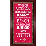 MLB Cincinnati Reds Subway Sign Wall Art with Authentic Dirt from the Great American Ballpark, 16x32-Inch