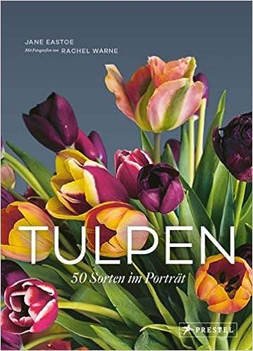 Tulpen: 50 Sorten im Porträt