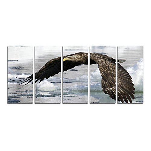 "CyioArt - 5 Panels White Tailed Sea Eagle Wall Art Painting The Picture Print On Canvas Animal Pictures For Home Decor Decoration Gift (69""W x 32""H, framed and ready to hang)"
