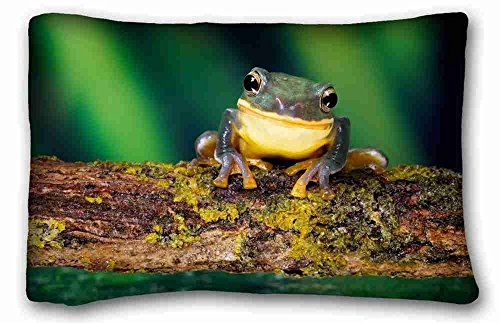 - Custom Characteristic ( Animals frog bright colors branch moss ) Pillowcase Cushion Cover Design Standard Size 20x30 inches One Sides suitable for King-bed