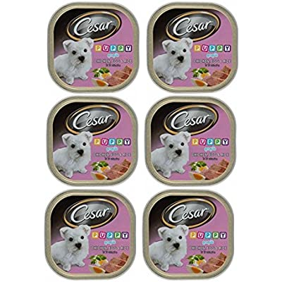 Cesar Puppy Chicken, Egg & Rice 3.53Oz - 6 Pack