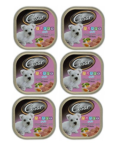 Cesar Puppy Chicken, Egg & Rice 3.53Oz - 6 Pack