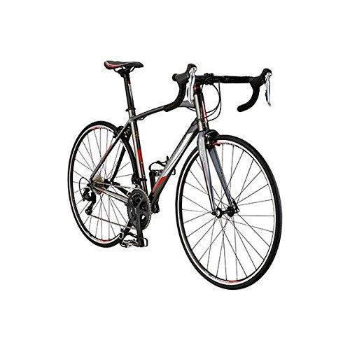 シュウィン(SCHWINN) ロードバイク SCW FASTBACK 1 S グレー 2018 Mサイズ B0784JJ519