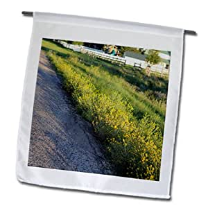Jos Fauxtographee Realistic - Grass growing along side the road with light shining on it from the sun - 12 x 18 inch Garden Flag (fl_64599_1)