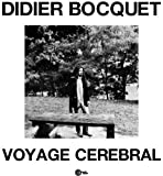 Voyage Cerebral