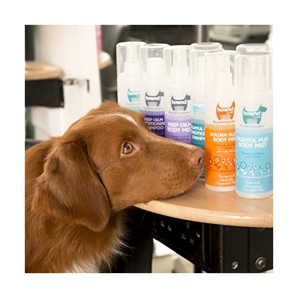 HOWND Yup You Stink! Conditioning Dog Shampoo 8.5oz All-Natural Dog Shampoo Click on image for further info. 4