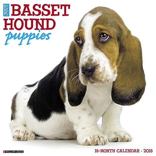 Just Basset Hound Puppies 2018 Wall Calendar (Dog Breed Calendar)