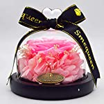 Smequeen-Valentines-Day-Rose-for-Women-Preserved-Fresh-Flower-with-Fallen-Petals-in-a-Glass-Box-Pink