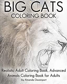 Amazoncom Wild Cat Coloring Book For Adults Big Cat Coloring Book
