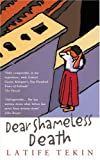 Front cover for the book Dear Shameless Death by Latife Tekin