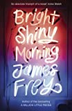 Bright Shiny Morning by James Frey front cover