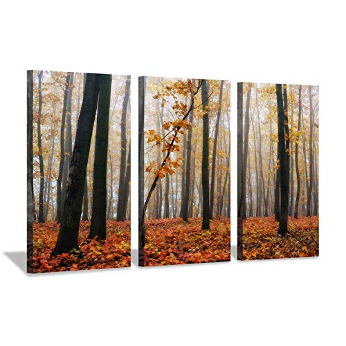 (Forest Landscape Picture Canvas Prints: Trees with Fall Leaves Artwork Painting for Wall Art)
