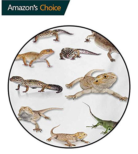 - RUGSMAT Reptile Warm Soft Cotton Luxury Plush Baby Rugs,Colorful Staring Leopard Gecko Family Image Primitive Reptiles Wildlife Art Print Kids Teepee Tent Game Play House Round,Round-71 Inch