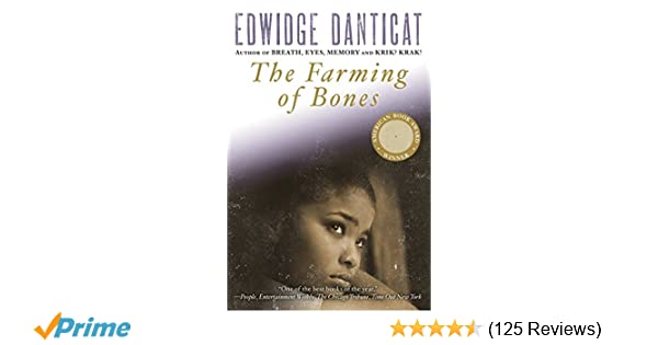 best edwidge danticat book
