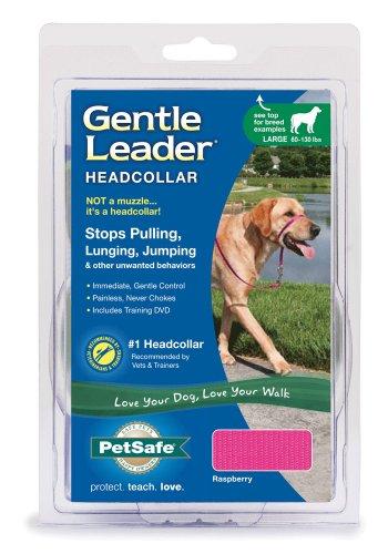 Premier Gentle Leader Quick Release Headcollar, Large, Raspberry, My Pet Supplies