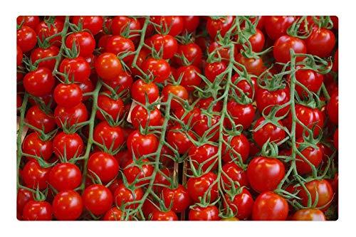 (Tree26 Indoor Floor Rug/Mat (23.6 x 15.7 Inch) - Tomatoes Vegetables Plant Macro Market Stall Food)
