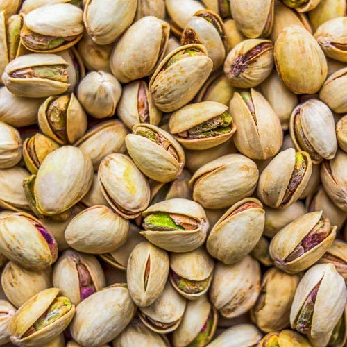 Pistachios - Bulk Pistachios Salted In Shell 10 Pound Value Bag - Freshest and highest quality nuts from US Based farmer market - Quality nuts for homes, restaurants, and bakeries. (10 LBS) by Gourmet Nuts and Dried Fruit (Image #4)