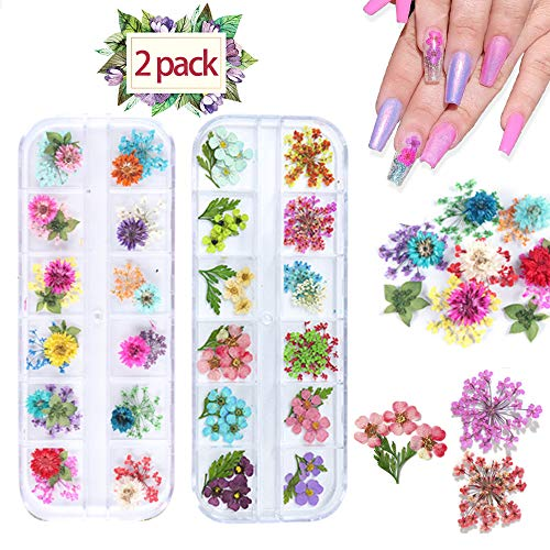 Dried Flowers for Nail Art, Colorful Real Natural Flowers and Green Leaf Nail Art Supplies 3D Nail Decoration for UV Gel/Acrylic Nail Design - 24 Boxes Flowers & Leaf