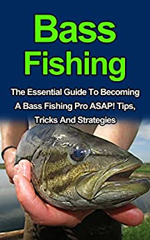 Bass fishing discover the best tips tricks for Bass fishing for beginners