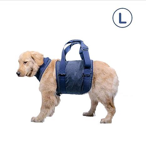 Navigatee Arnés De Elevación para Perros, Apoyo para Mascotas Y ...