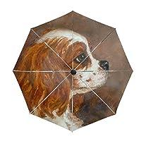 Compact Umbrella,Shih Tzu Girl Automatic Folding Travel Umbrella,Windproof Reinforced Canopy, Ergonomic Non-Slip Handle, Auto Open/Close for One Handed Operation