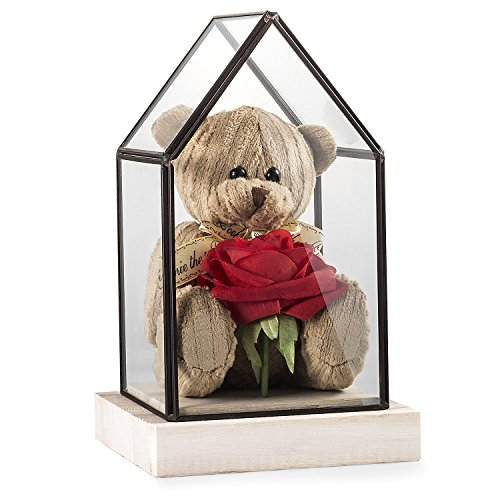 Louis Garden Teddy Bear Glass House Gift Louis Bears