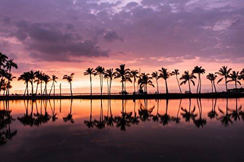 A colorful sunset w/ palm trees reflected by the Waikoloa pond, Big Island, Hawaii print picture photo photograph fine art by Mike Krzywonski Photography