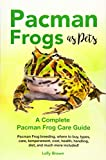 Pacman Frogs as Pets: Pacman Frog breeding, where
