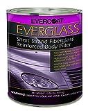 Evercoat 622 Everglass Short Strand Fiber