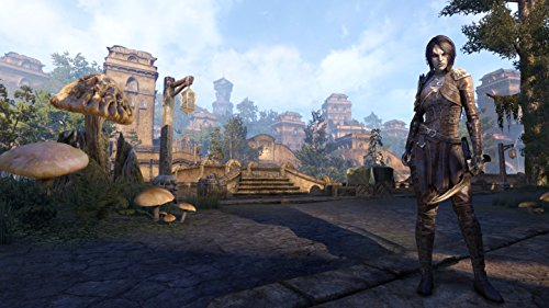 Bethesda ELOX1APCPENA The Elder Scrolls Online: Morrowind Mac