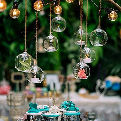 Hanging Terrarium Decorations Succulent Tillandsia product image