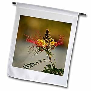 Add More Color - Floral Designs - Desert Bird of Paradise - 18 x 27 inch Garden Flag (fl_50144_2)