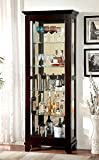 HOMES: Inside + Out Curio Alecie Cabinet with Built In Light, Dark Walnut