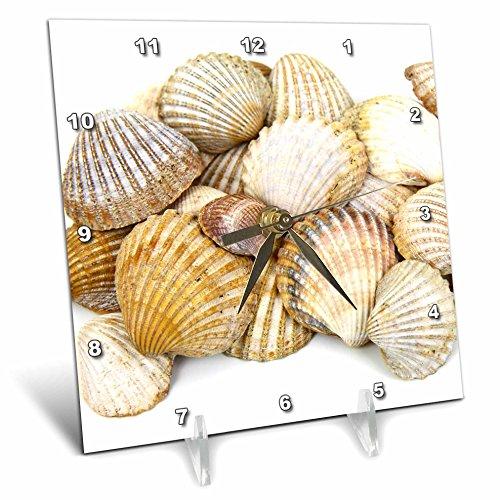 3dRose dc_50550_1 Sea Shells by the Sea Shore Summer Beach Theme Desk Clock, 6 by 6