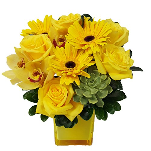 Jewel Collection: Yellow Diamond by Ashland Addison - Fresh Flowers Hand Delivered - Chicago Area by Ashland Addison Florist