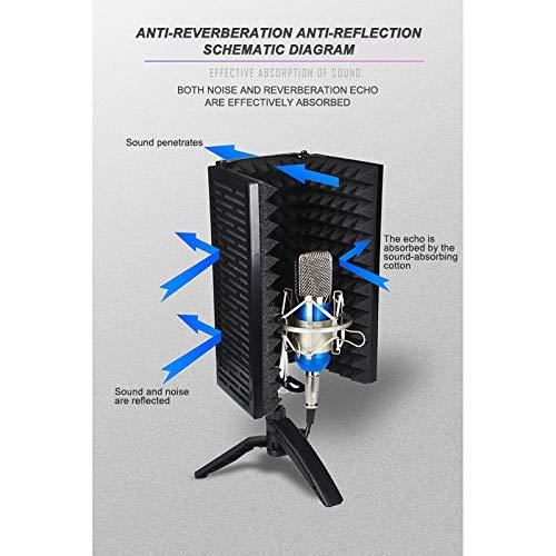 Nexmon Bouclier disolation de microphone pour enregistrement de studio professionnel Convient /à tout /équipement denregistrement de microphone /à condensateur. filtre anti-pop