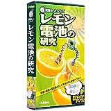 NEW実験キット レモン電池の研究