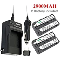 Kastar NP-F570 Battery (2-Pack) and Charger Kit for Sony L Series InfoLithium Battery NP-F570, NP-F550, NP-F530, NP-F330 and Sony DCRVX2100, HDRFX1, HD1000U, HVRZ1U, HXR-NX5U, NEX-FS100 Cameras