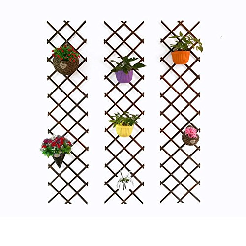SL&ZX Telescopic fence,White fence Antiseptic carbide fence Wooden fence Hanging net Climbing climbing Climbing frame Decorative grid flower rack-F 300x120cm(118x47inch) (Frame Picket Flower Fence)