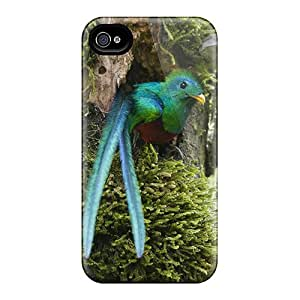 Tpu Shockproof/dirt-proof Long Tail Bird Cover Case For Iphone(4/4s)