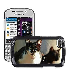 GoGoMobile Slim Protector Hard Shell Cover Case // M00118725 Cat Animal Cat Face Head // BlackBerry Q10