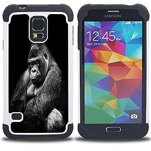 /Skull Market/ - Gorilla For Samsung Galaxy S5 I9600 G9009 G9008V - 3in1 h????brido prueba de choques de impacto resistente goma Combo pesada cubierta de la caja protec -