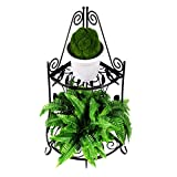 indoor pedestal stand - YOO.MEE Stable Corner Plant Stand Firmly Support Free Standing Shelf for Flower Pots, Strong Metal Steel Pedestal for in Door and out Door Decoration