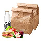 """Hangnuo 2 Pack Insulated Brown Paper Lunch Bags Reusable, Retro Lunch Sacks for Adults Work Office & Kids School Picnic, Brown Paper - 10"""" x 8"""" x 4.3"""""""
