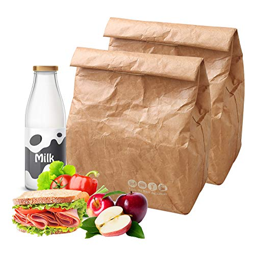 Hangnuo 2 Pack Insulated Brown Paper Lunch Bags Reusable, Retro Lunch Sacks for Adults Work Office & Kids School Picnic, Brown Paper - 10 x 8 x 4.3
